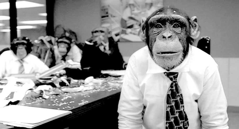 mistakes brand making monkeys